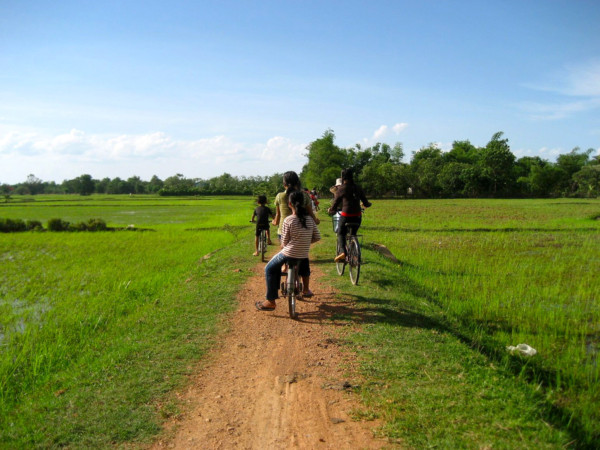 home rice fields ride bike